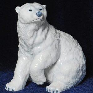 Белые медведи Арктика Белый полярный медведь