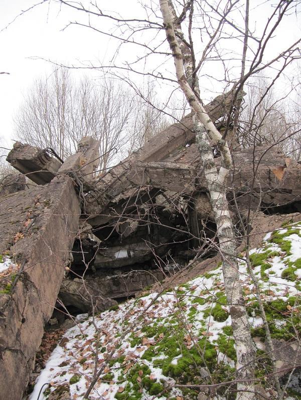 Волхов река остатки фарфор
